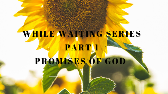 WHILE WATING SERIES:  PROMISES OF GOD